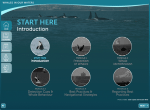 Screenshot of the Whales in our Waters course