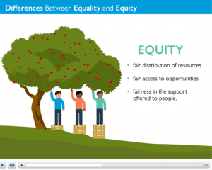 Screenshot of the Health Equity course