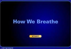 Open School BC – How We Breathe – Biology 12