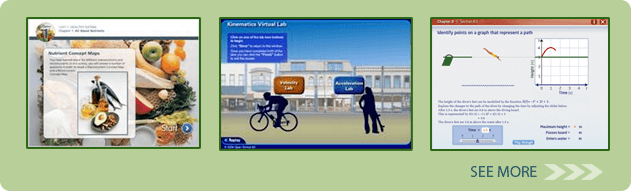 Interactive Learning Assets